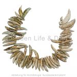 Animal teeth, pendant / bead